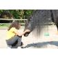 Afbeelding van Ervaar de positieve effecten van interactie met dieren op De Peerdegaerdt