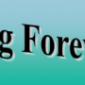 Afbeelding van Stichting Forever-Fun, Zwijndrecht