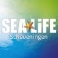 Afbeelding van Sealife Scheveningen