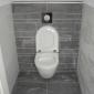 Afbeelding van 2 toilettten vernieuwen
