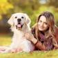 Afbeelding van Hondenverwenweekend