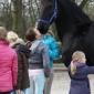 Afbeelding van Herfstprogramma voor de jeugd tijdens herfstvakantie op De Peerdegaerdt