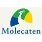 Afbeelding van Molecaten Park Waterbos Rockanje