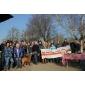 Afbeelding van Help zaterdag 11 maart mee tijdens NLdoet op De Peerdegaerdt