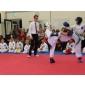 Afbeelding van Fightclub KISPORT 01-07-2017 Barneveld