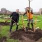 Afbeelding van Gemeente gaat 500 extra bomen planten