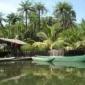 Afbeelding van Het landschap en de natuur van Gambia