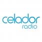 Logo representing CELADOR - Ge2